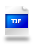 Spauda Logo Kostrzewa_tif